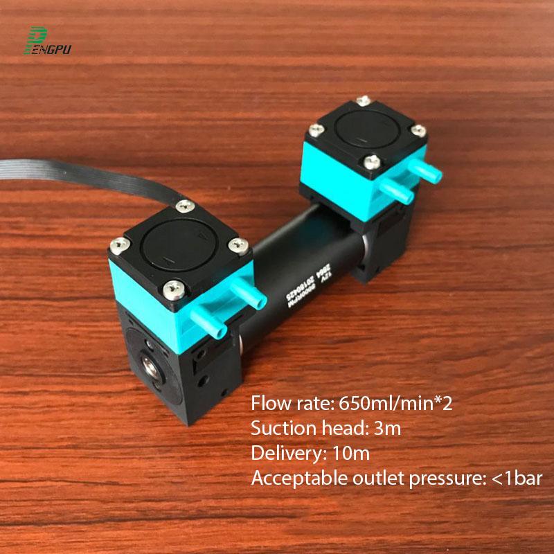 Dual Head Mini Water Pump 12 Volt Small Diaphragm Liquid